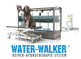 Water Walker