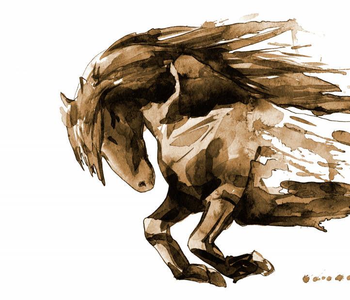 Das Lachesis Pferd Verhaltenstypus Verband Deutscher